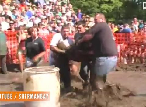 News video: Church's Pig Wrestling Event Sparks Controversy